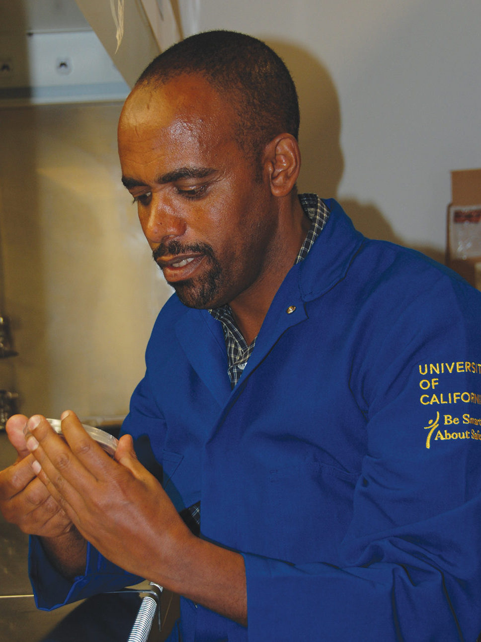 Sultan Mohammed Yimer working in the lab at UC Davis